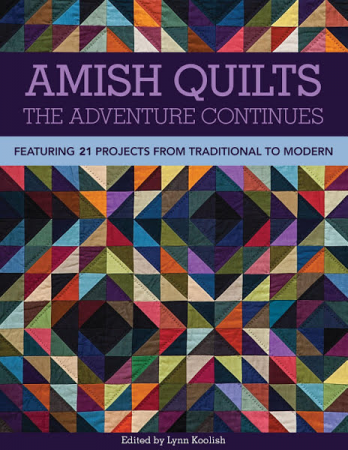 Amish Quilts book